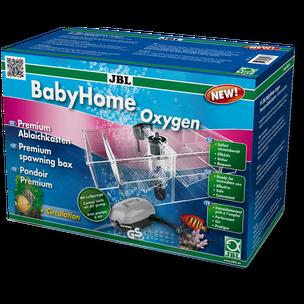 BabyHome Oxygen