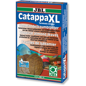Catappa XL