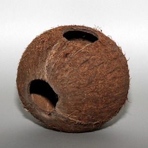 Cocos Cava (kókusz menedék)