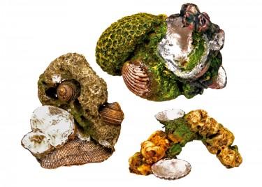 Akvárium dísz Korall kövek kagylókkal