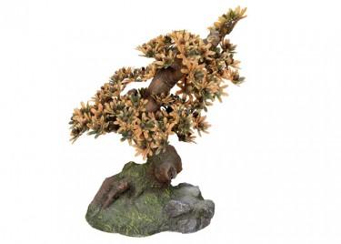 akváriumi dekor bonsai